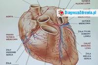 Niewydolność serca Cz.3przyczyny